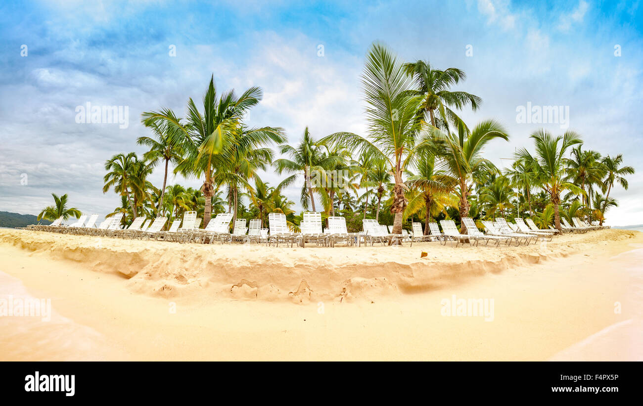 Public beach with palm trees in Cayo Levantado island, Dominican Republic - Stock Image