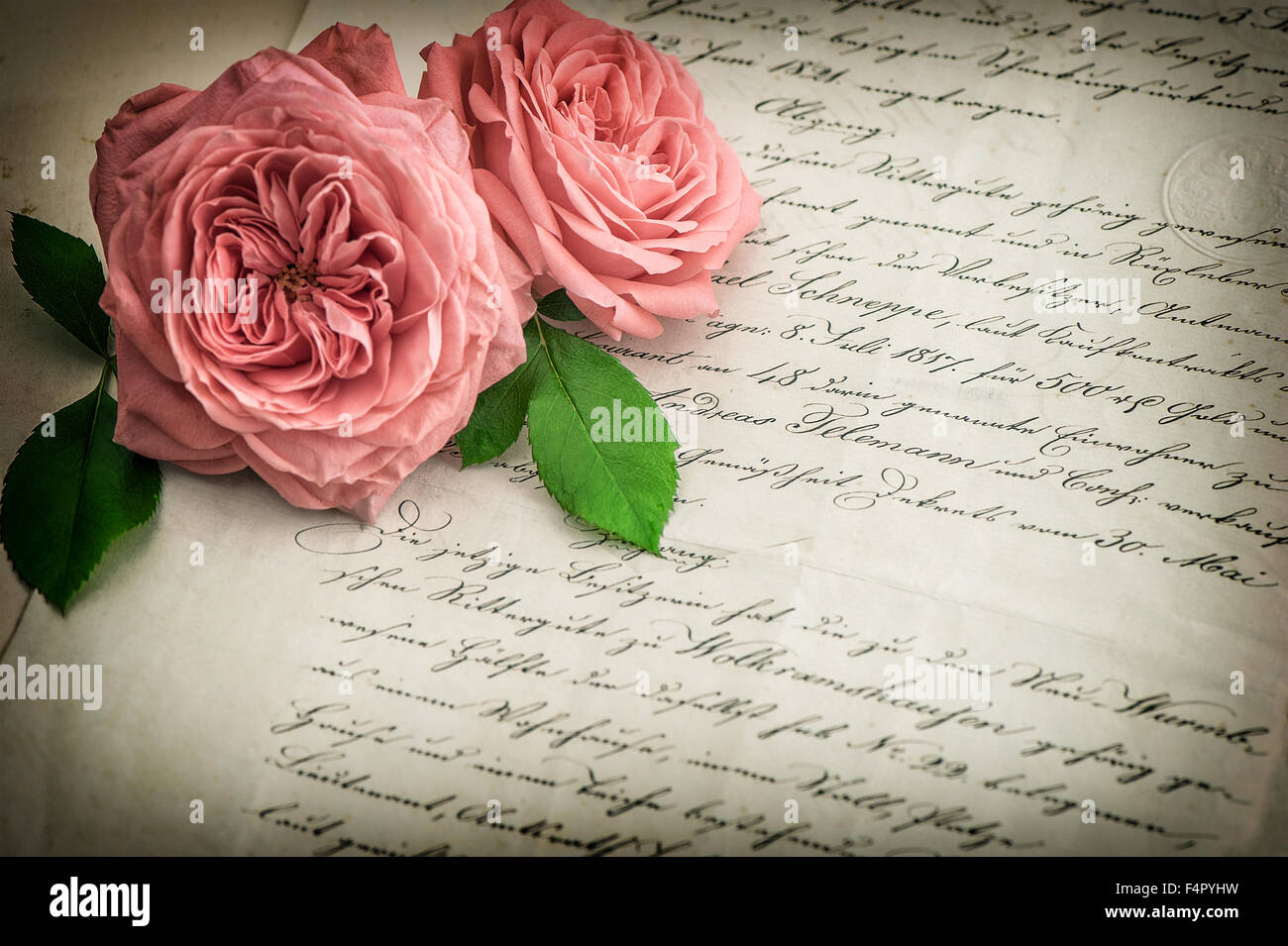 Pink Rose Flowers And Old Handwritten Letter Vintage Paper Background Retro Style Toned Picture With Vignette Selective Focus