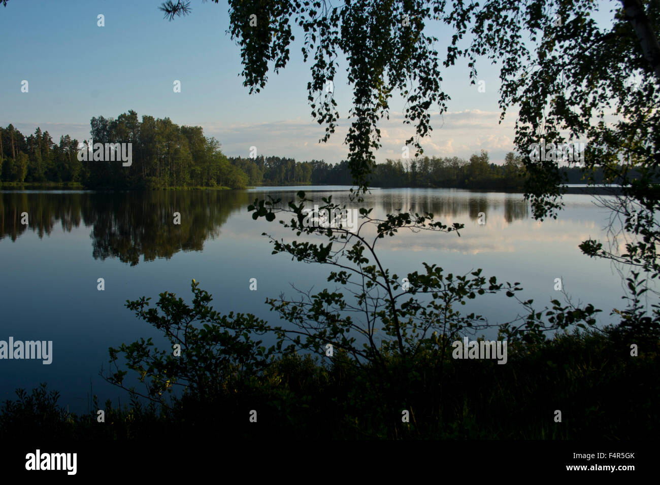 Sweden, Europe, Smaland, Markaryd, Store Sjö, lake, shore, trees, summer, islands, Stock Photo