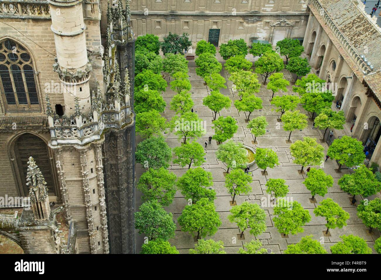 Patio de los Naranjos, Patio of the Oranges, from the Giralda bell tower, Seville Cathedral,  Andalucia, Spain, - Stock Image