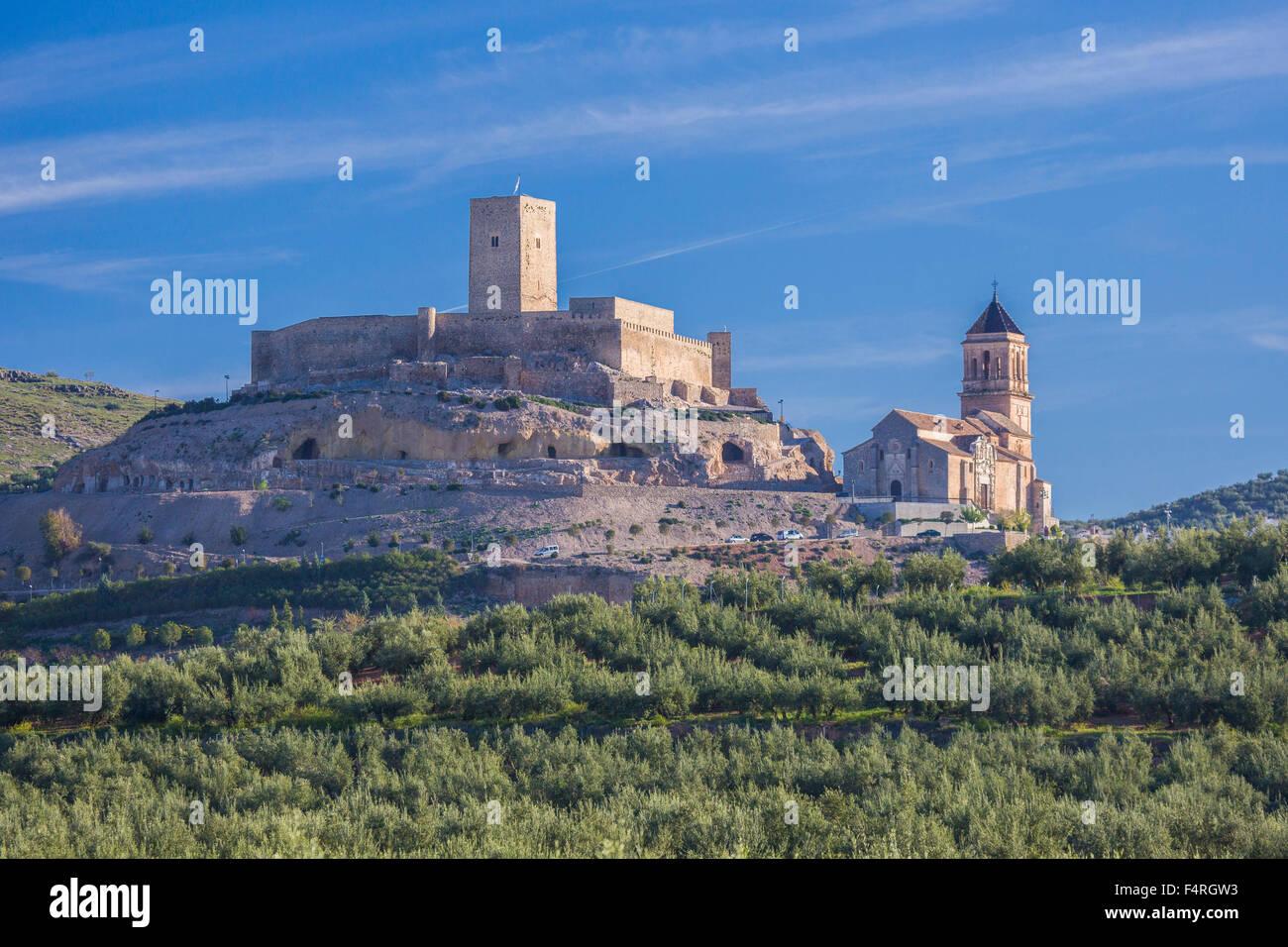 Alcaudete, town, Andalusia, Jaen, Landscape, Spain, Europe, Spring, architecture, castle, church, church, olive, Stock Photo