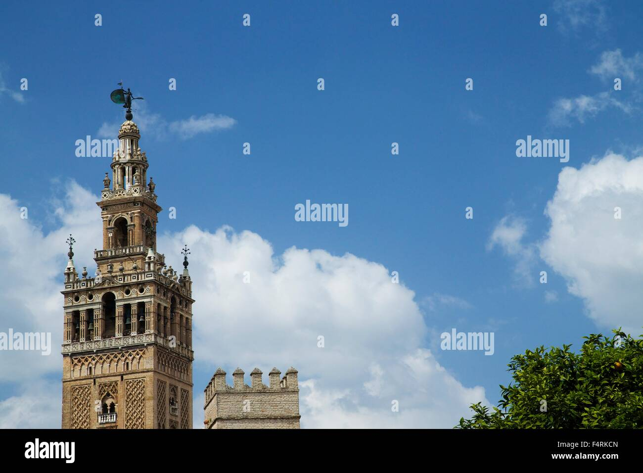 La Giralda, bell tower, minaret, UNESCO World Heritage Site Seville Cathedral, Andalucia, Spain, Europe - Stock Image