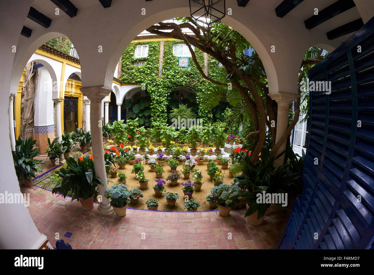 Courtyard garden, Seville, Andalucia, Spain, Europe - Stock Image