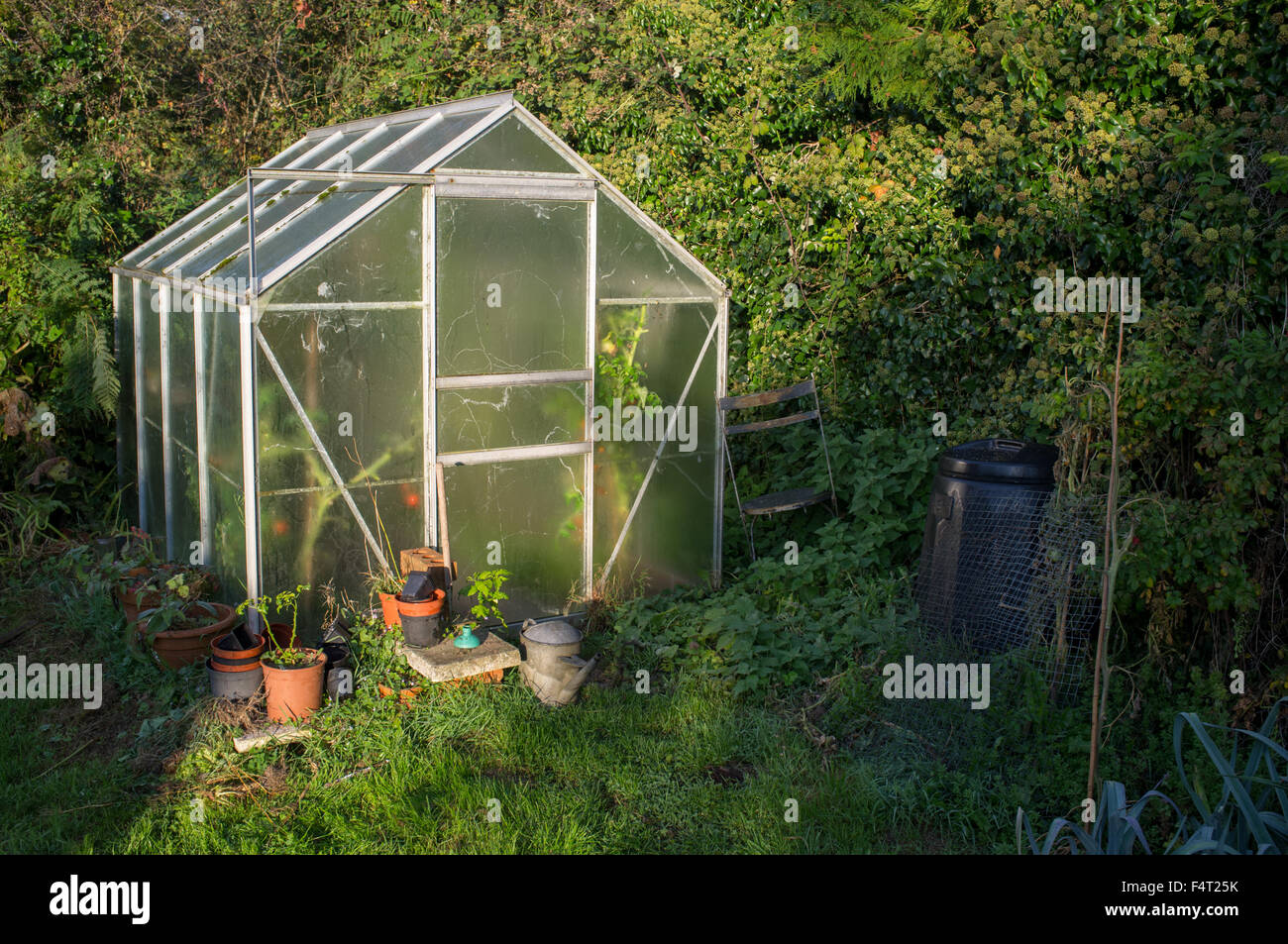 A greenhouse with it's glass covered in condensation - Stock Image