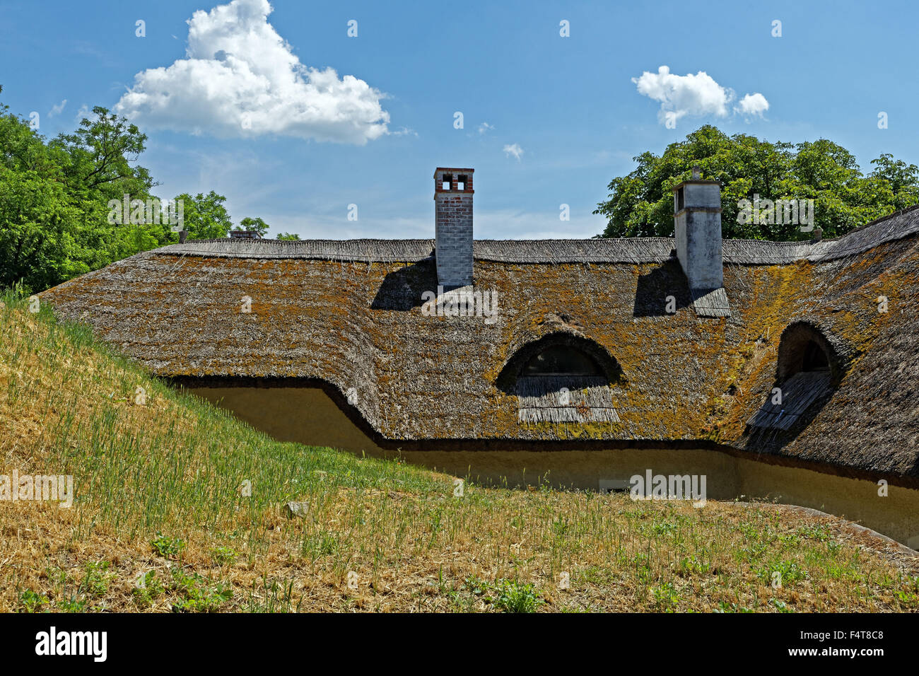 Building, old, historically, thatched roof - Stock Image