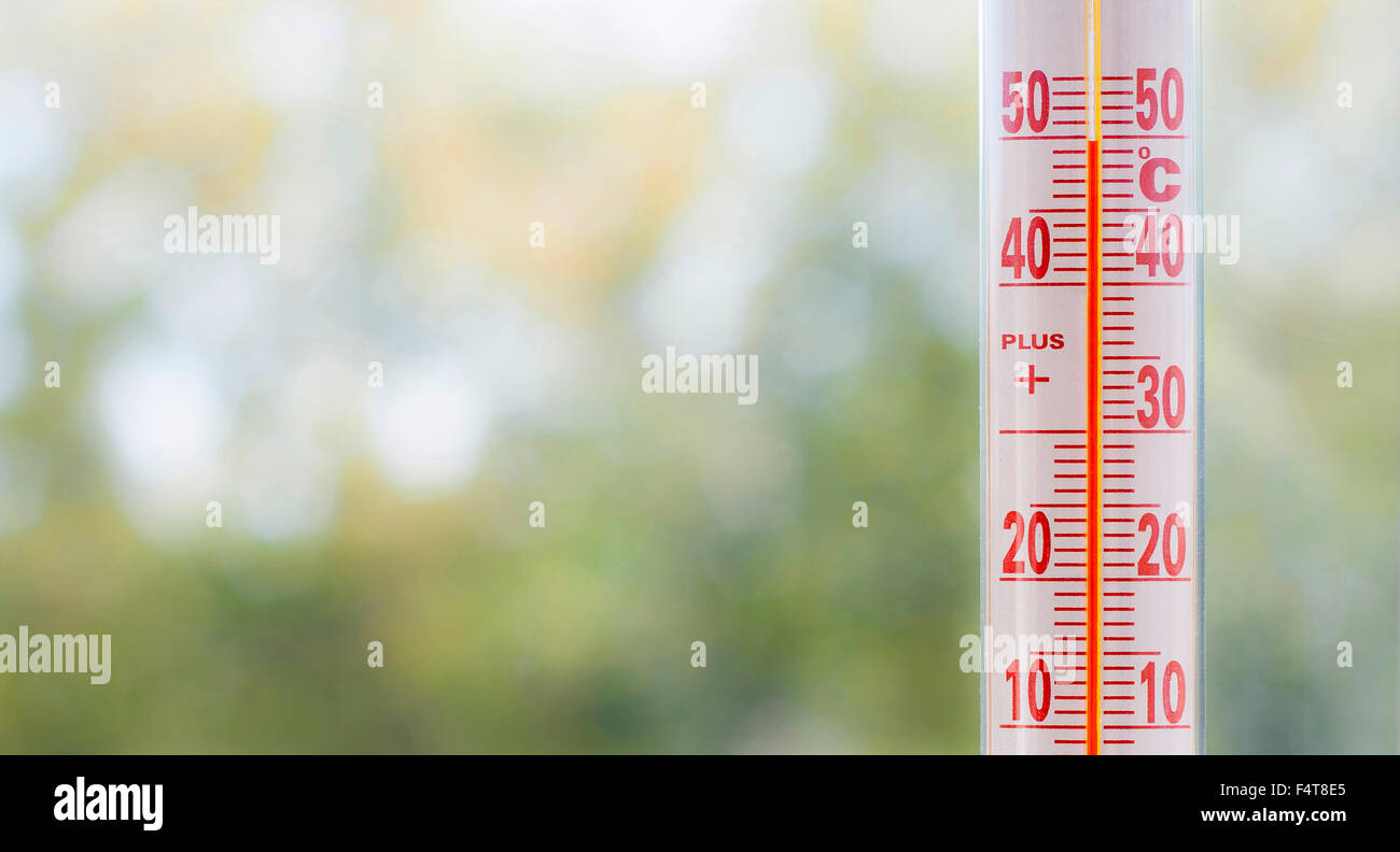 Outdoor thermometer measuring 50 degrees heat with out of focus plants background and space for text - Stock Image