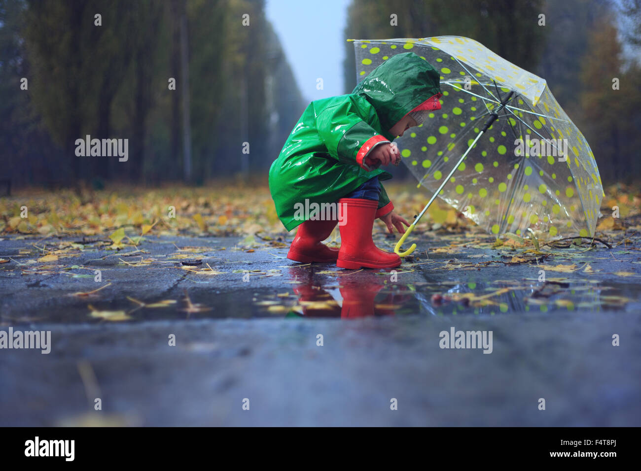 Toddler and umbrella in autumn rainy park - Stock Image
