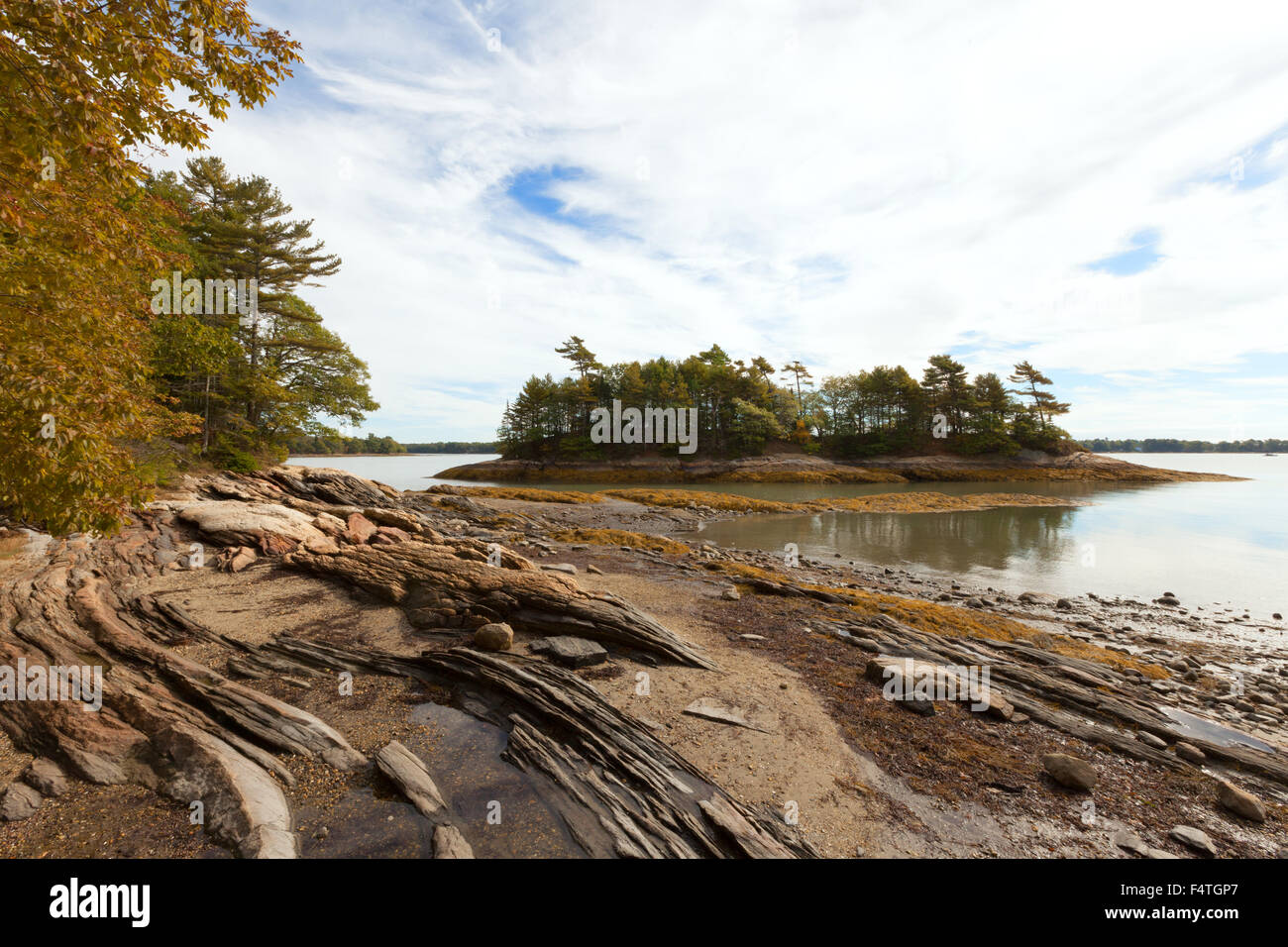 The Maine coast at Wolfe's Neck Woods state park, Casco Bay, Freeport, Maine USA - Stock Image
