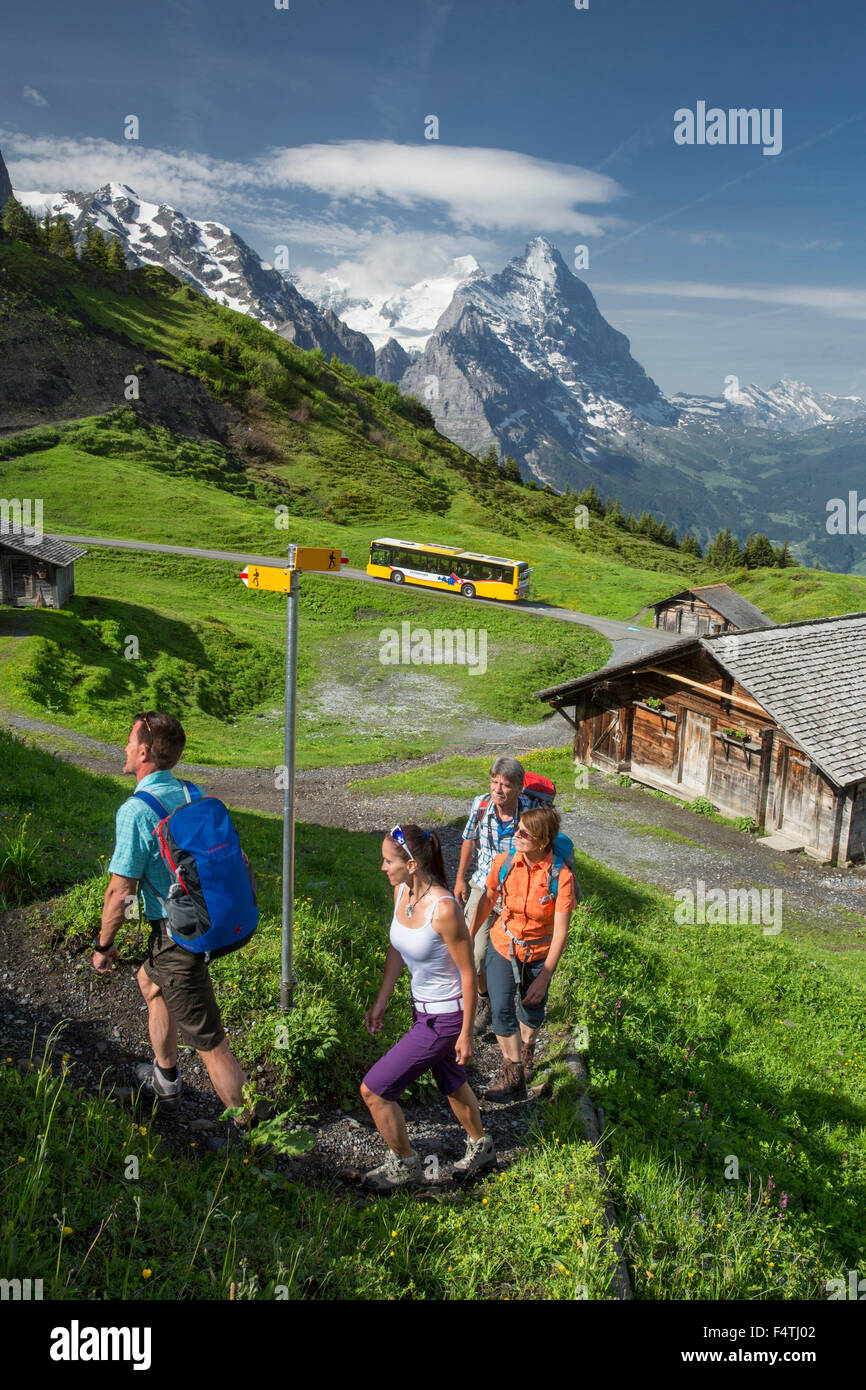Hiker on Grosse Scheidegg, - Stock Image