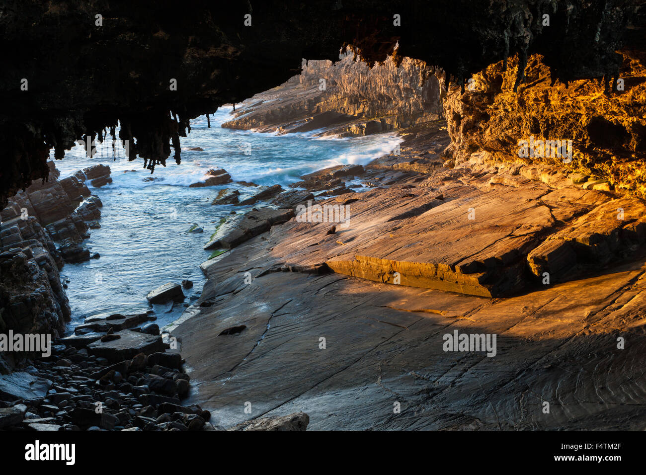Admiral Arch, Australia, south Australia, Kangaroo Island, Flinders Chase, national park, sea, coast, sea grotto, - Stock Image