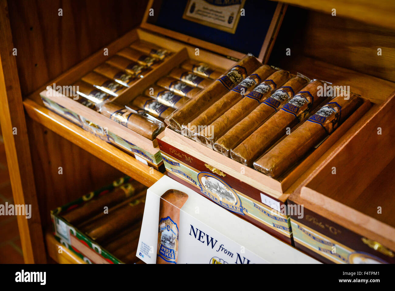 Assorted handmade cigars on display in store in Ybor City