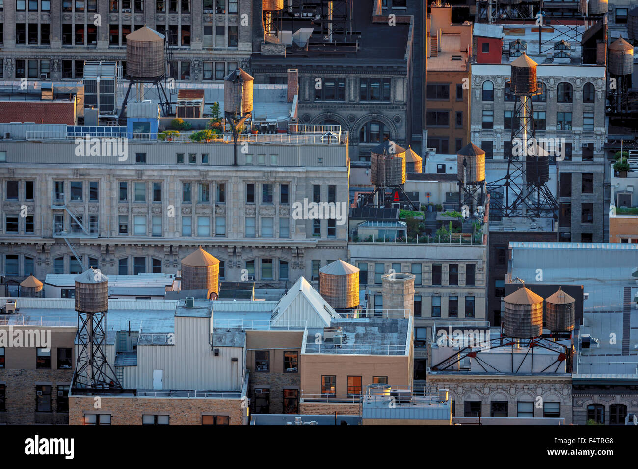 Late afternoon light over Chelsea building rooftops illuminating New York City typical water towers. Manhattan aerial - Stock Image