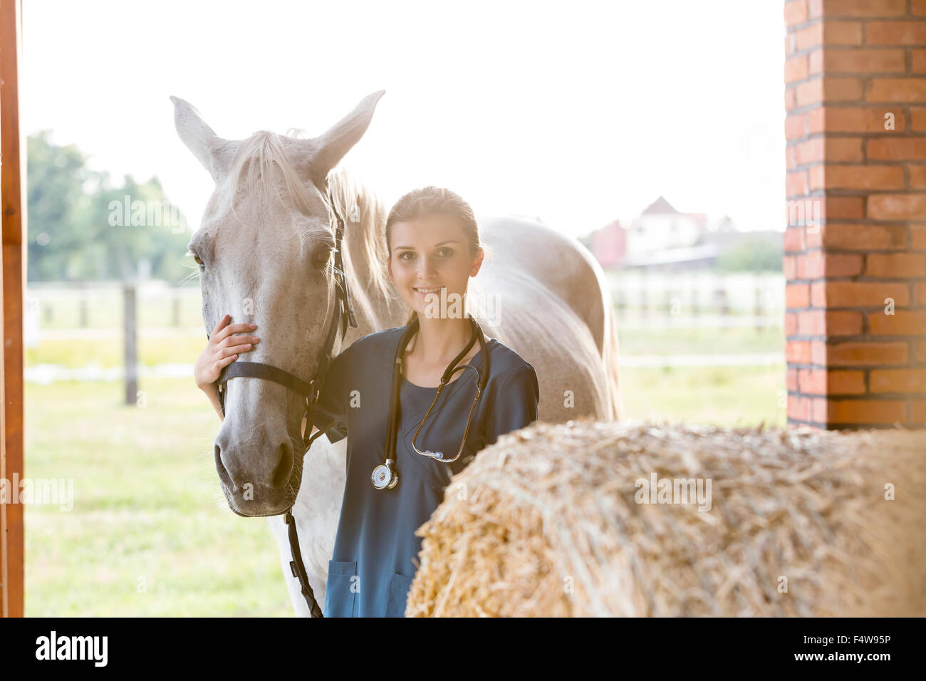 Portrait smiling veterinarian with horse in barn - Stock Image