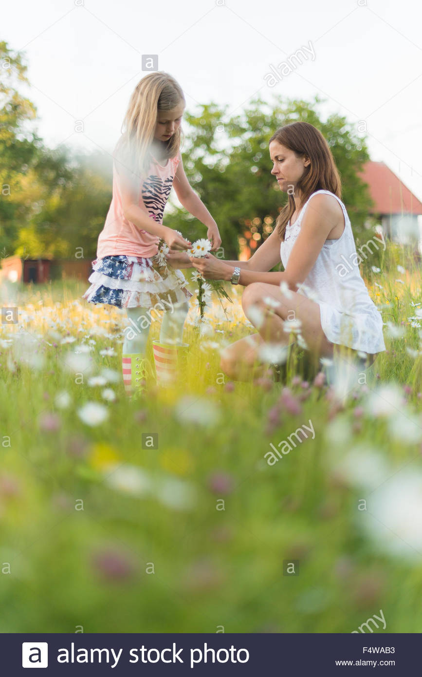 Sweden, Uppland, Vidinge, Mother and daughter (6-7) picking flowers in meadow - Stock Image