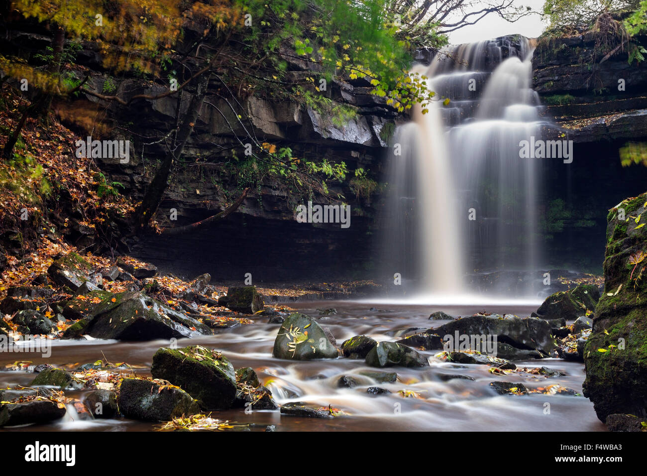Summerhill Force and Bowlees Beck in Autumn, Bowlees, Teesdale, County Durham UK - Stock Image
