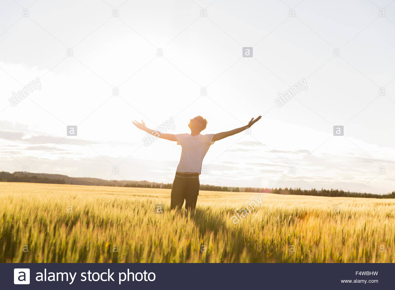 Man in sunny field with arms raised - Stock Image
