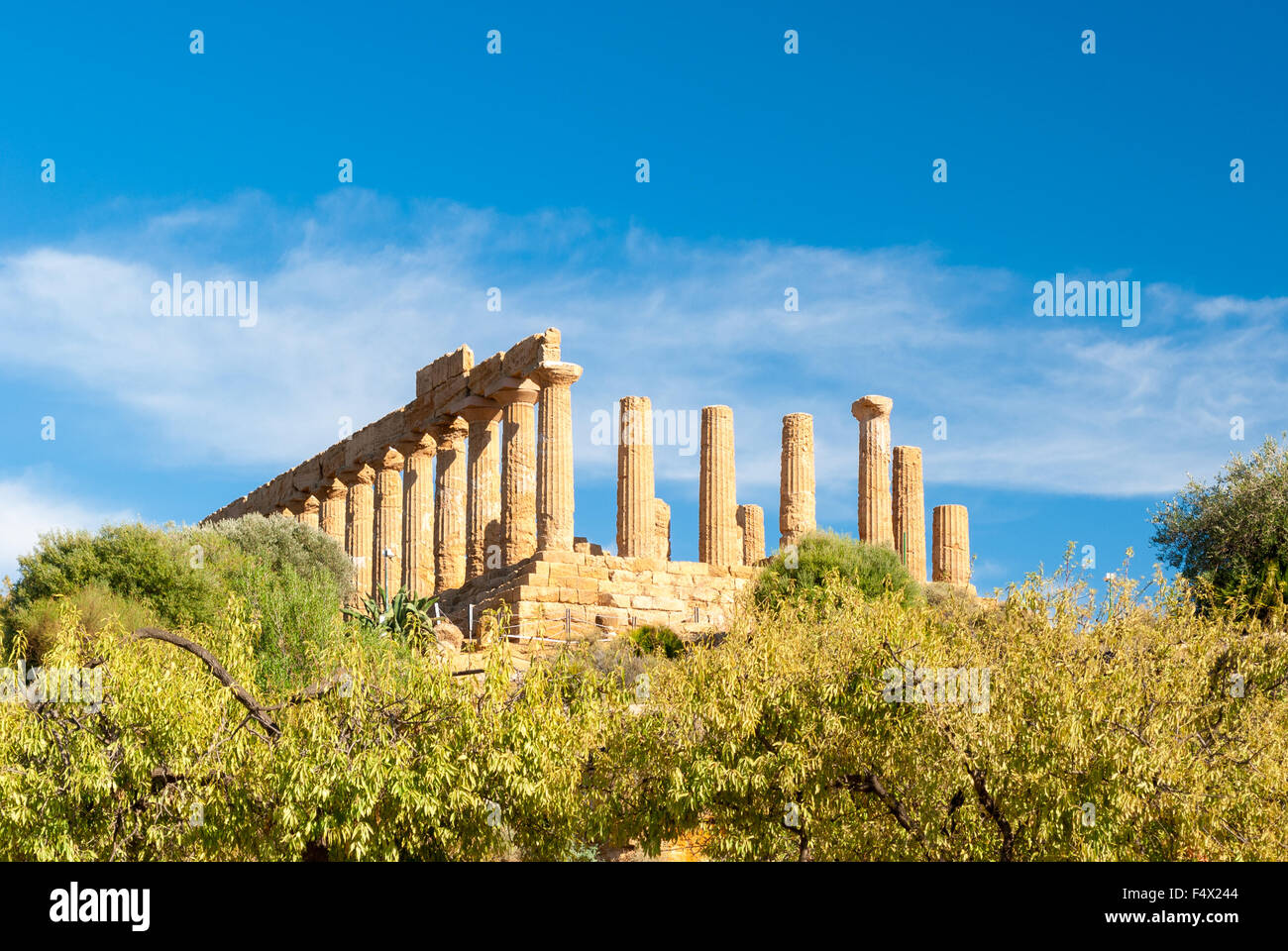 The greek temple of Juno behind almond trees in the Valley of the Temples of Agrigento - Stock Image