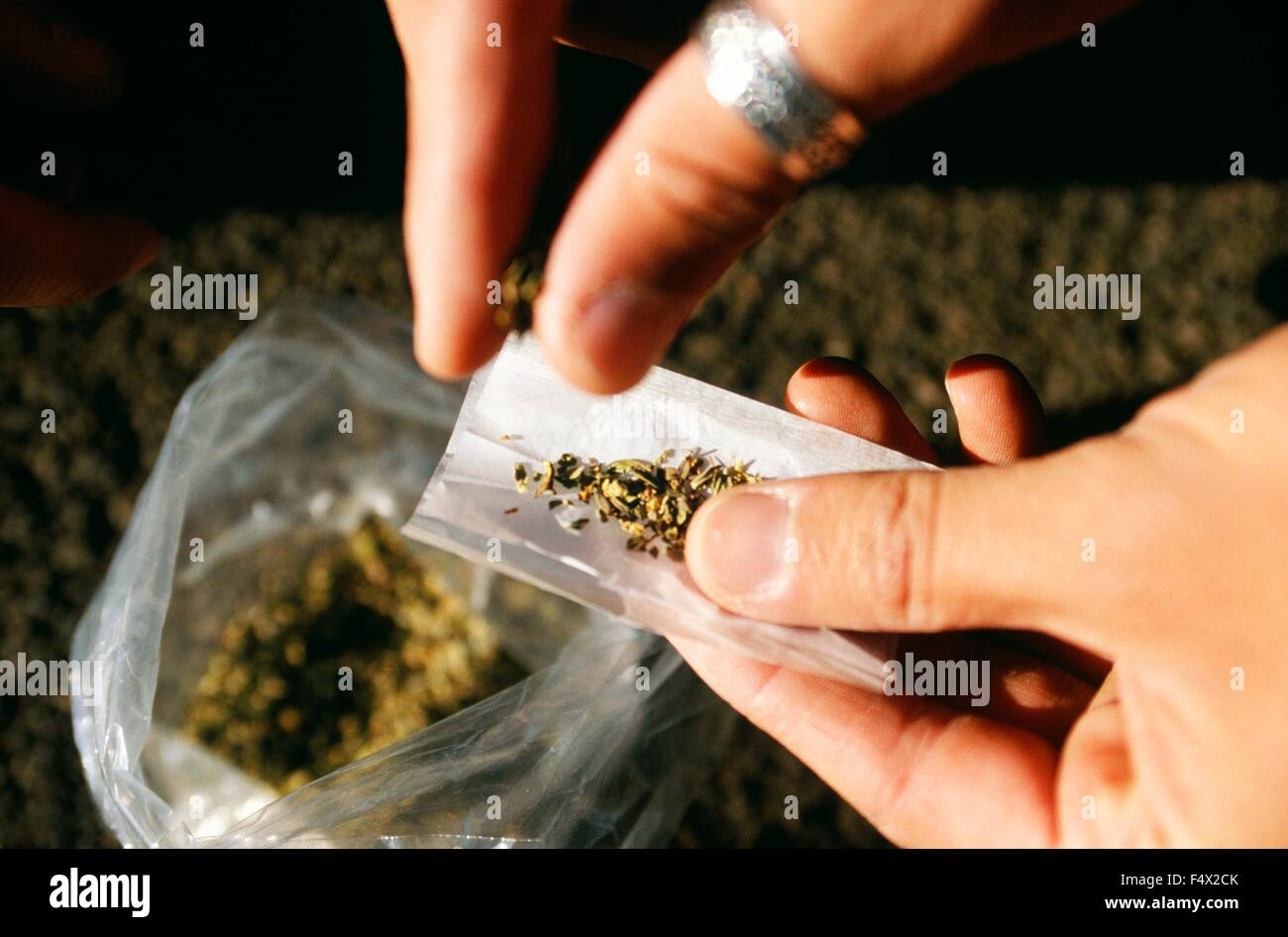 An addict rolls a joint using a synthetic cannabinoid called Spice use to spray on marijuana in order to enhance - Stock Image