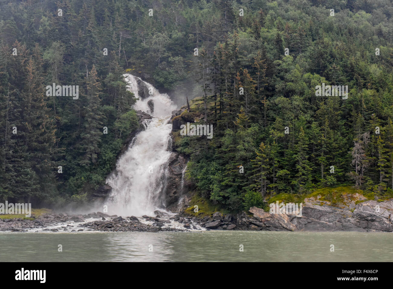 A scenic mountainside waterfall crashes through a forest of pine trees near Skagway Alaska | Lynn Canal fjord cruise - Stock Image