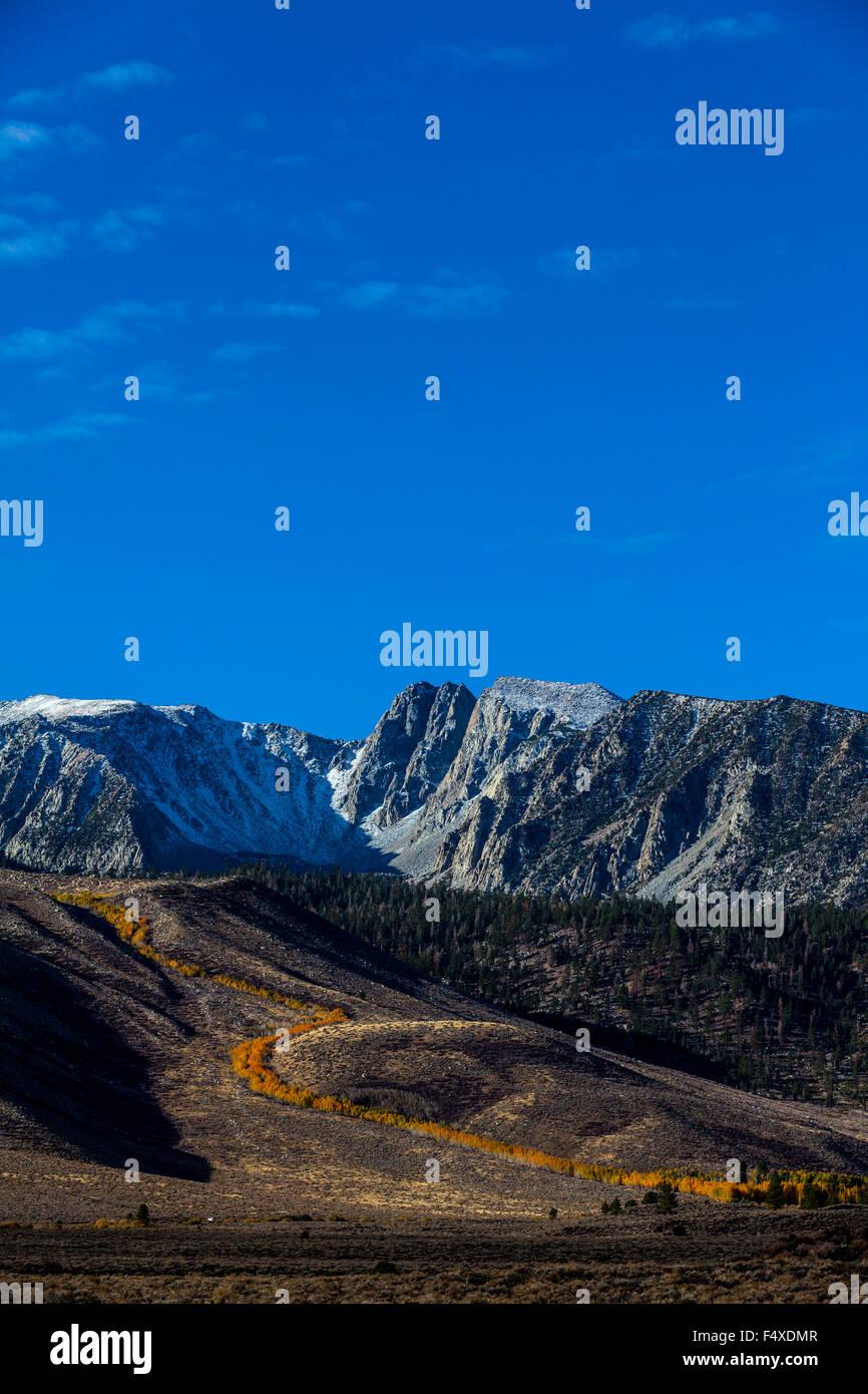 Fall color along Sherwin Creek near Mammoth Lakes California in the Eastern Sierra Nevada mountains of California Stock Photo