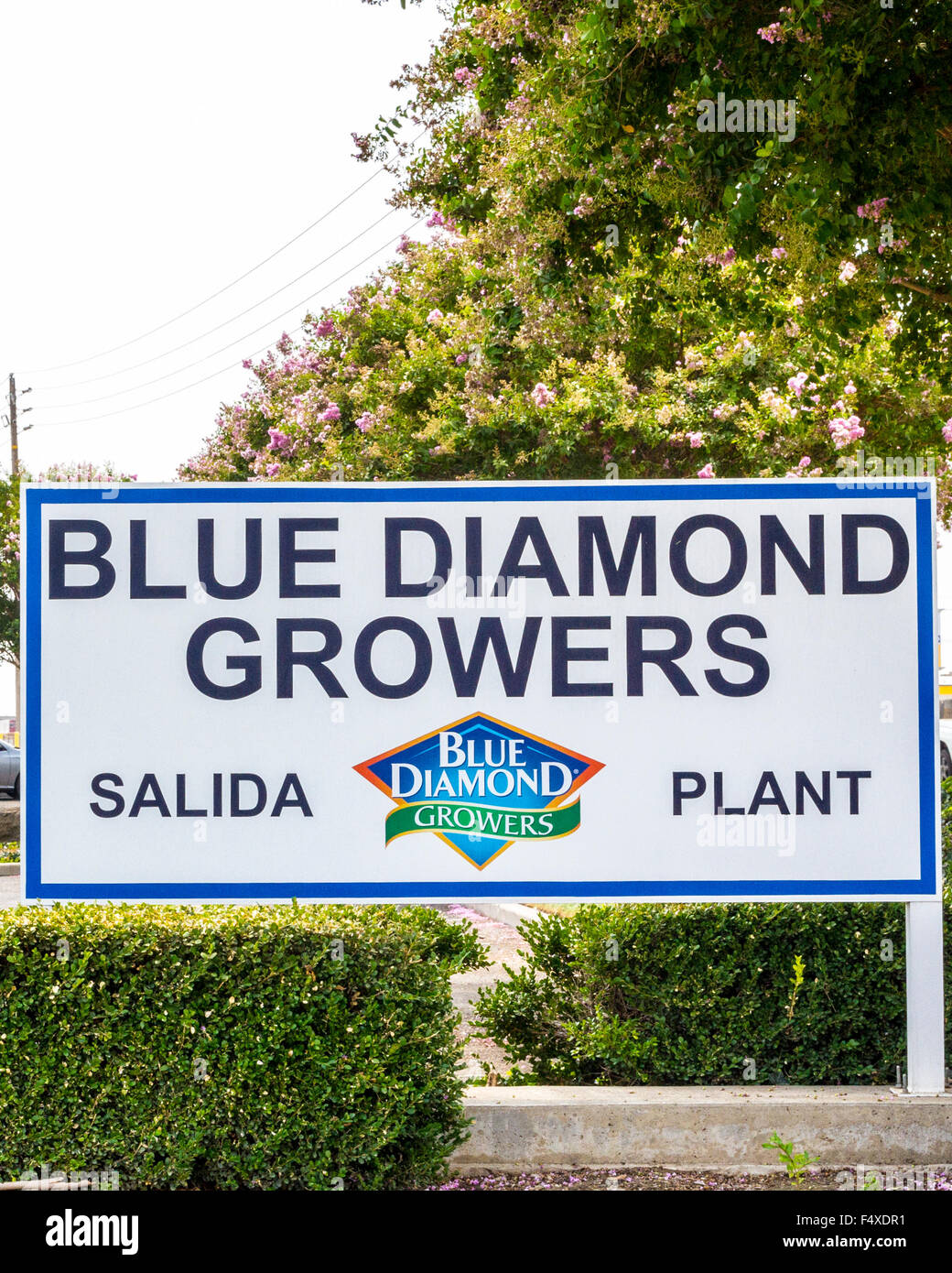 The Blue Diamond nut processing plant in Salida California - Stock Image