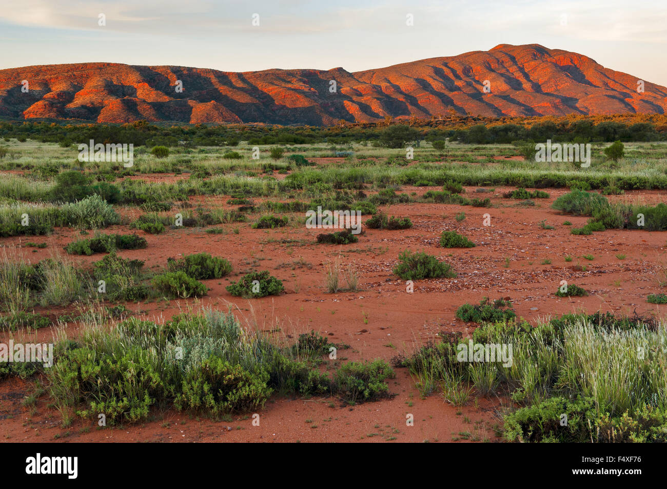 Western MacDonnell Ranges in evening light. - Stock Image