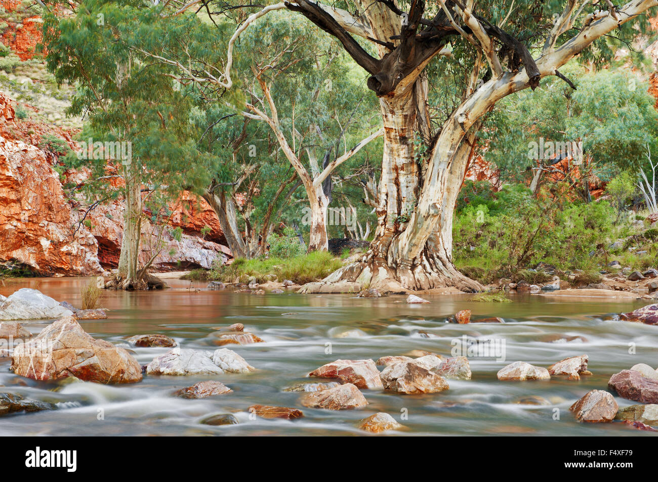 Ormiston Creek running after heavy rain in MacDonnell Ranges. - Stock Image