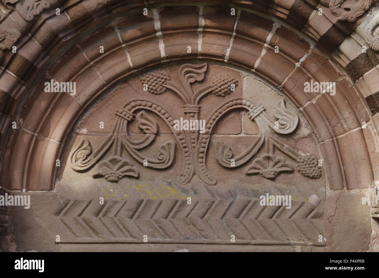 Tree of Life Tympanum, South Door, Kilpeck Church, Herefordshire, England - Stock Image