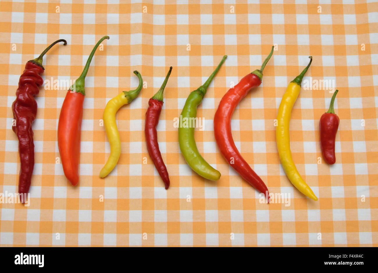 Red, Orange, Green And Yellow Hot Chili Peppers On White Yellow Tablecloth