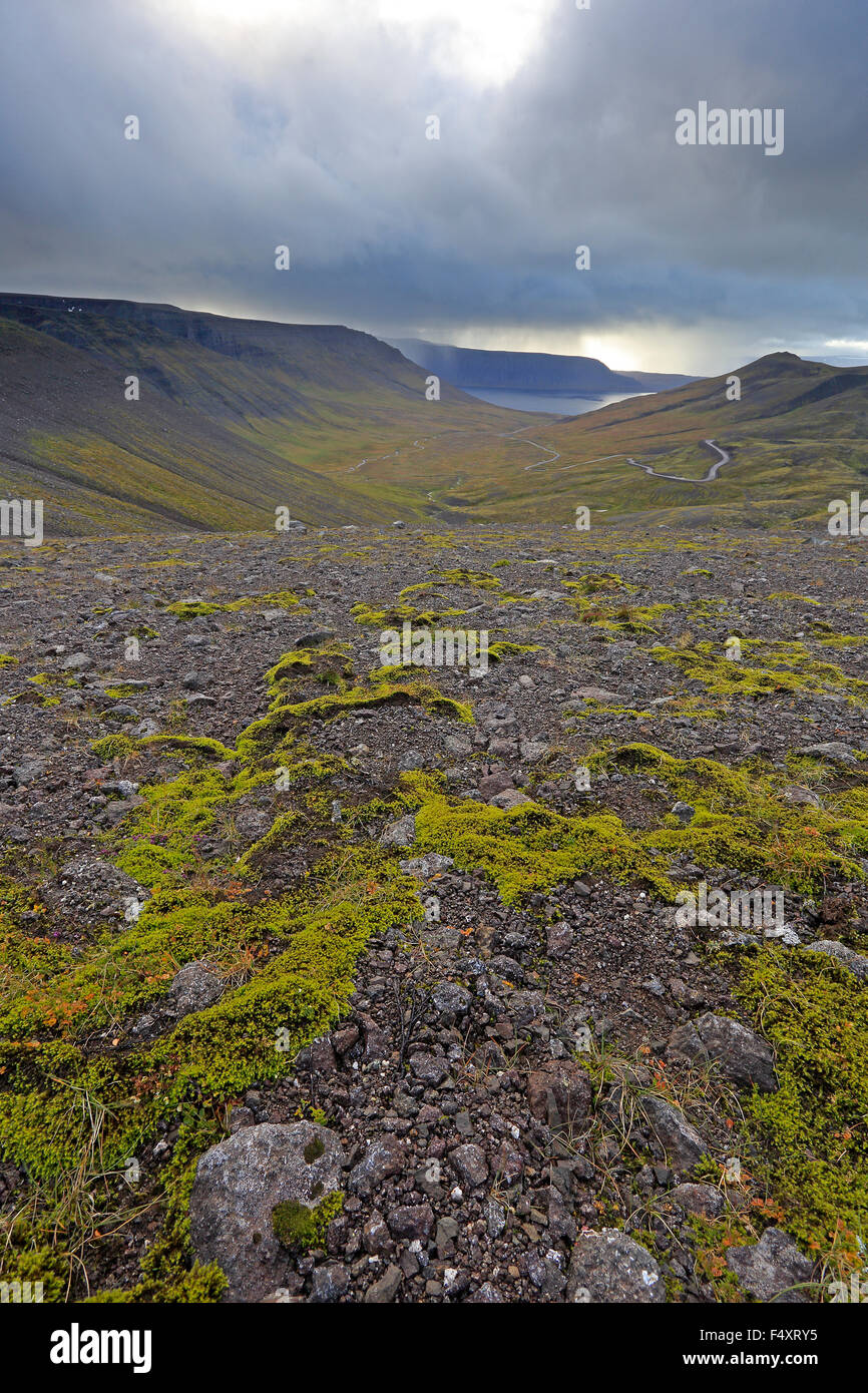 View of Westfjords Iceland showing stormy sky and moss covered ash - Stock Image