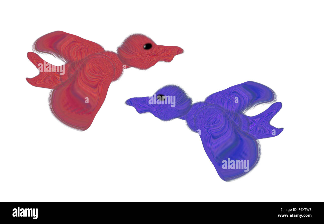 Two coloured ducks are isolated on a white background - Stock Image