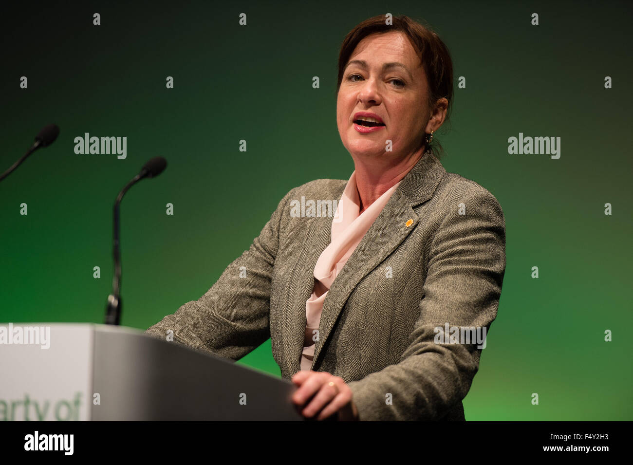 Aberystwyth Wales UK, Saturday 24 October 2015 UK Politics: LIZ SAVILLE ROBERTS MP speaking at the Plaid Cymru 2015 - Stock Image