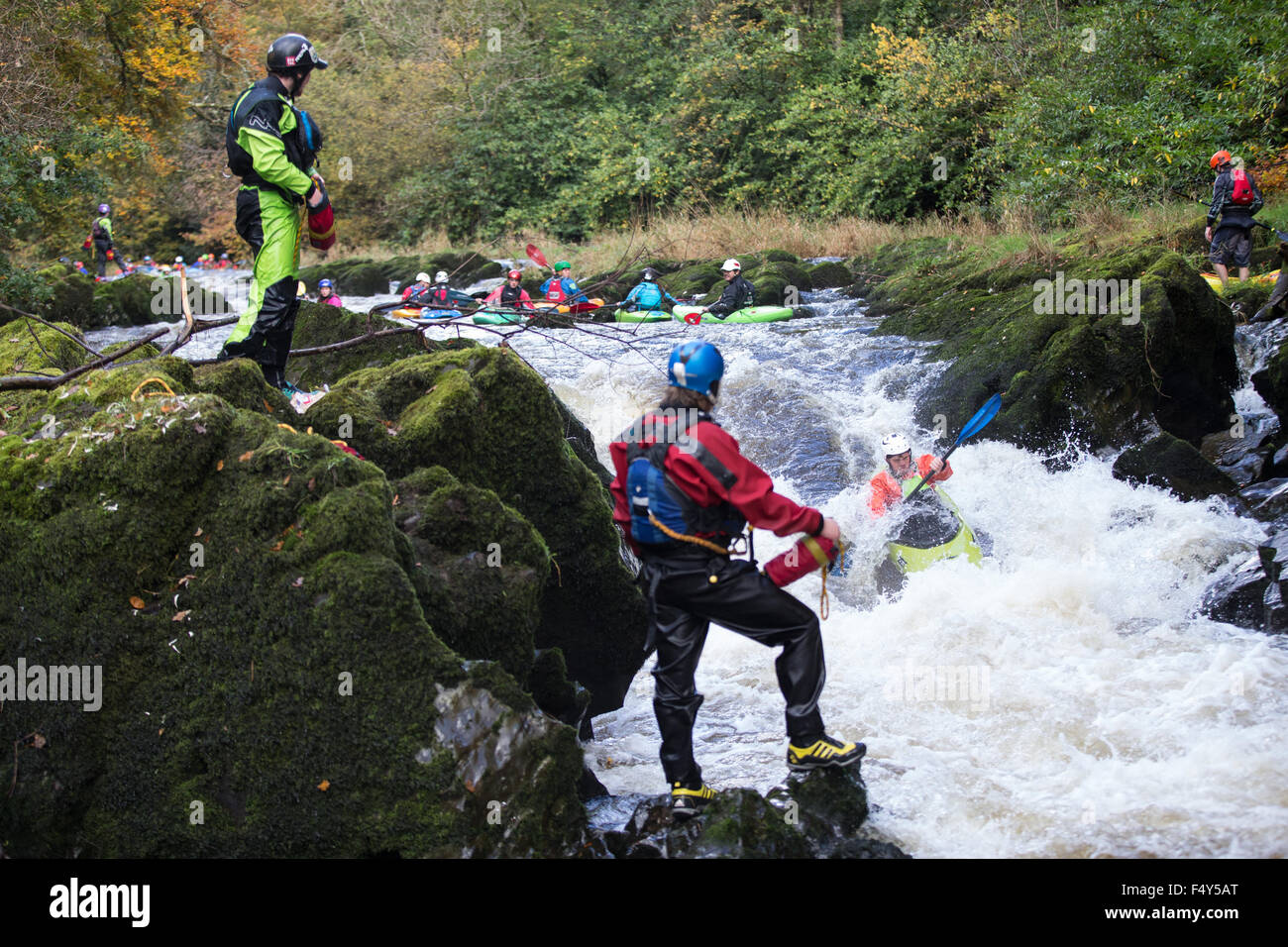 Henllan, Ceredigion, Wales, UK. 24th Oct, 2015. The annual Teifi Tour takes place this weekend. Kayakers, mainly Stock Photo