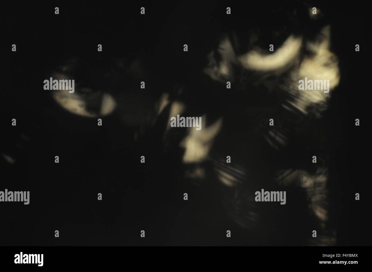 halloween shadows dark darkness scary black images depression angel spiritual bird eyes message - Stock Image