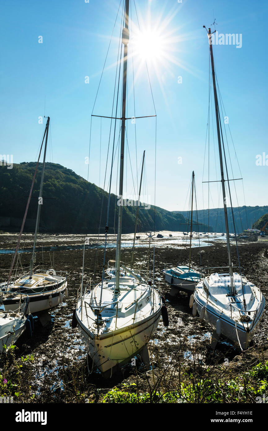 Yachts moored at low tide, with a starburst sun shining through the masts.lens flare - Stock Image