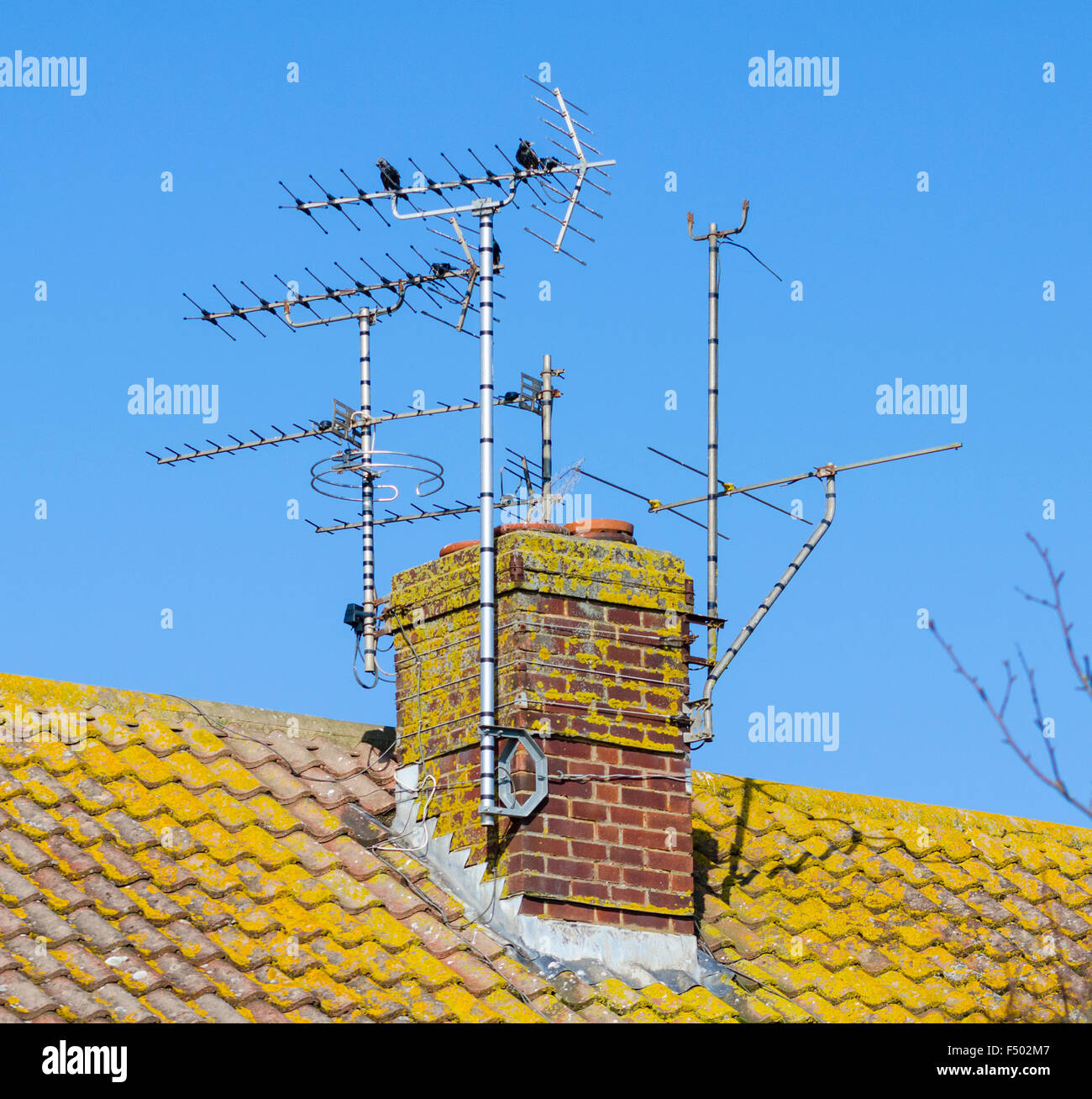 TV antennas on a chimney stack on a house in the UK. - Stock Image