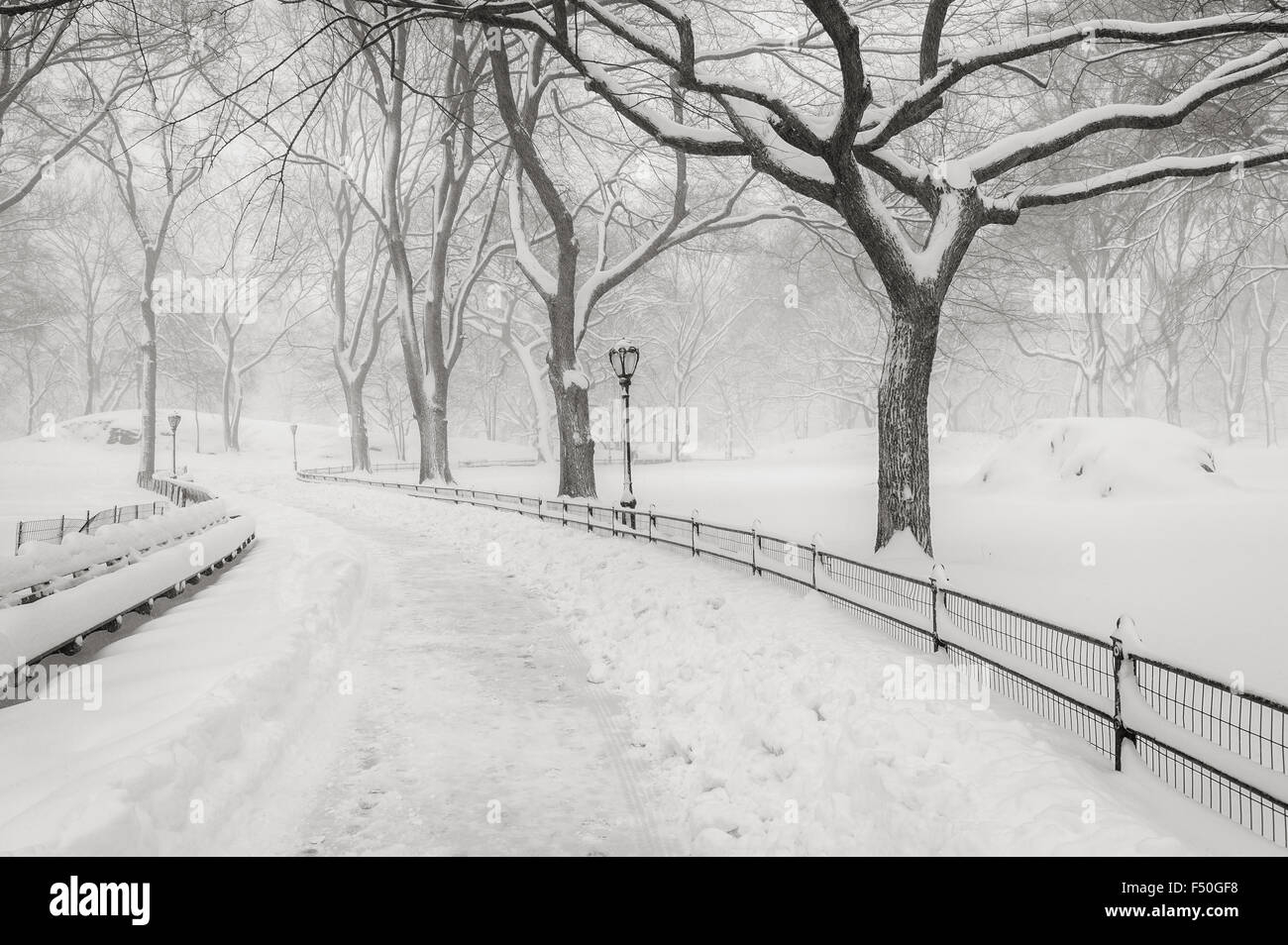 Snow in Central Park - Peaceful winter atmosphere in the heart of Manhattan, New York City - Stock Image