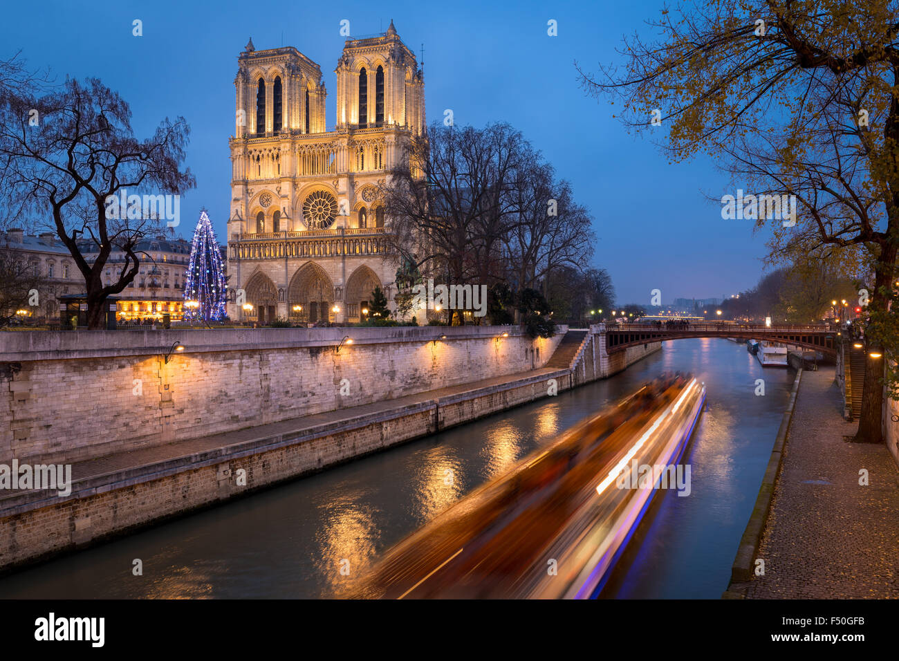 Notre Dame de Paris Cathedral and Christmas Tree Illumination in evening with the Seine River, Ile de la Cite, Paris, Stock Photo