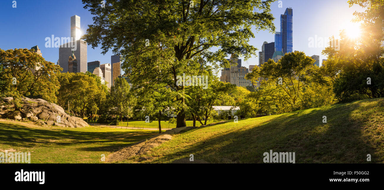 Afternoon panorama view of Central Park in Summer with Manhattan Skyscrapers, New York City Stock Photo