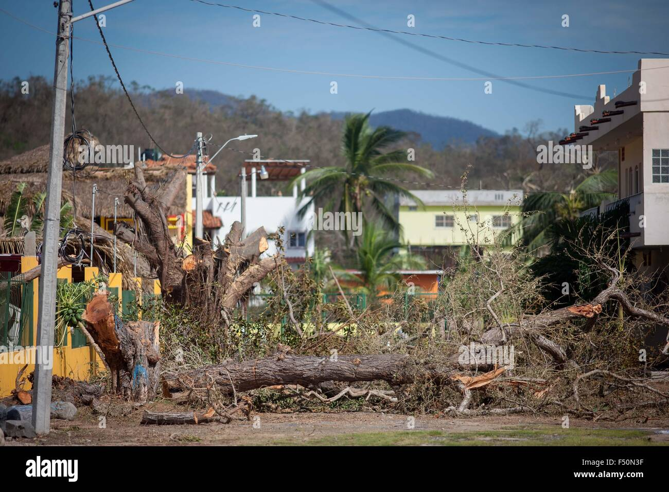 San Patricio Melaque Mexico 25th Oct 2015 Fallen Trees Are Seen