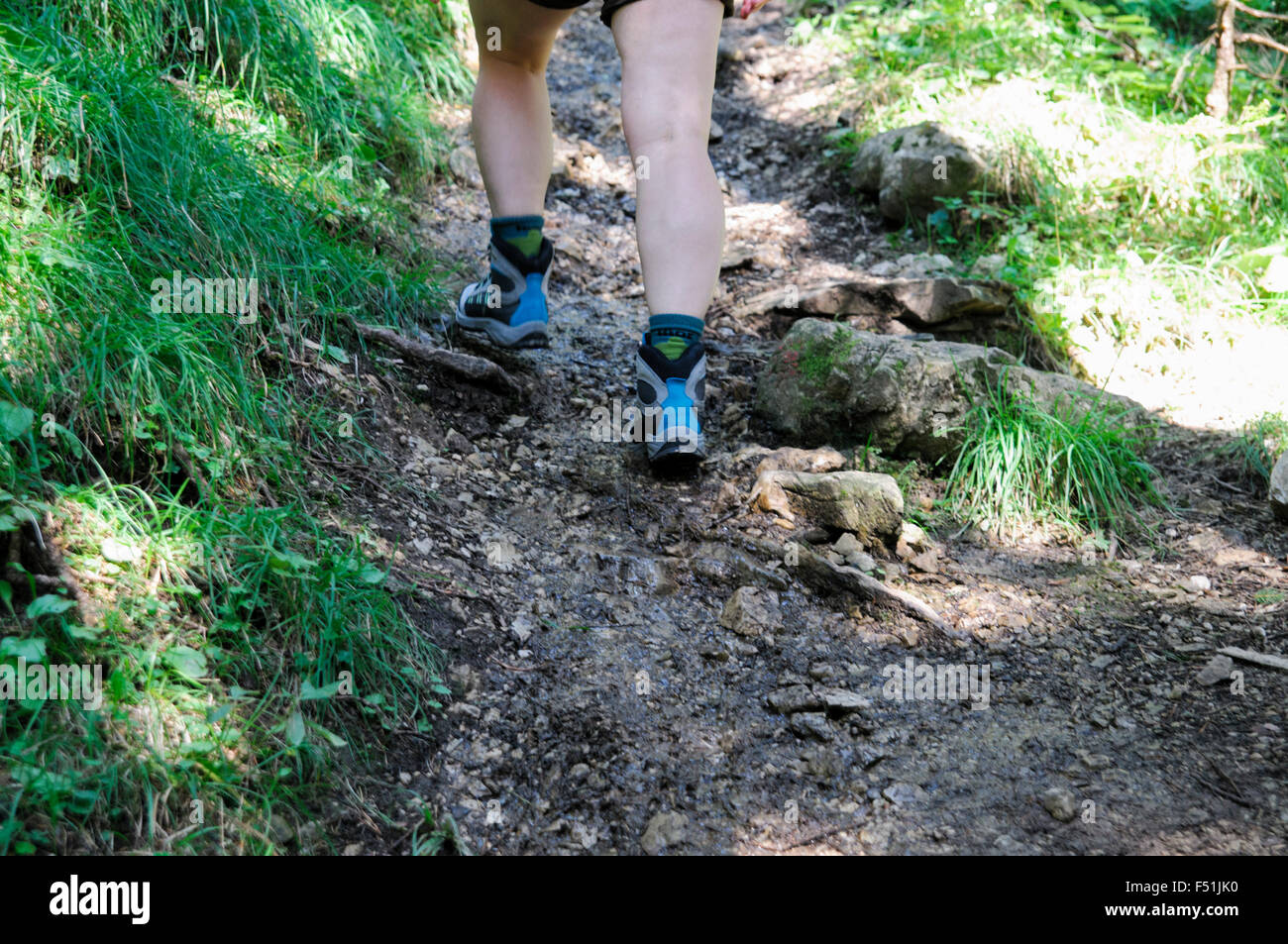 Female hiker hikes in the forest. Close up of the feet and shoes Model release available - Stock Image