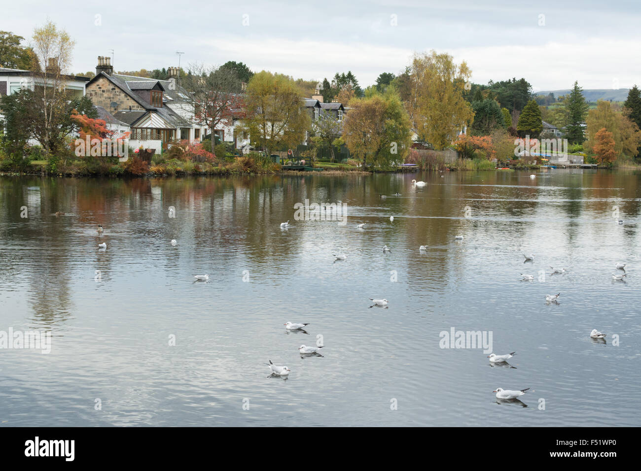 Tannoch Loch, Milngavie in autumn.  Milngavie is an affluent suburb of Glasgow, approx 6 miles nw of the city centre, - Stock Image