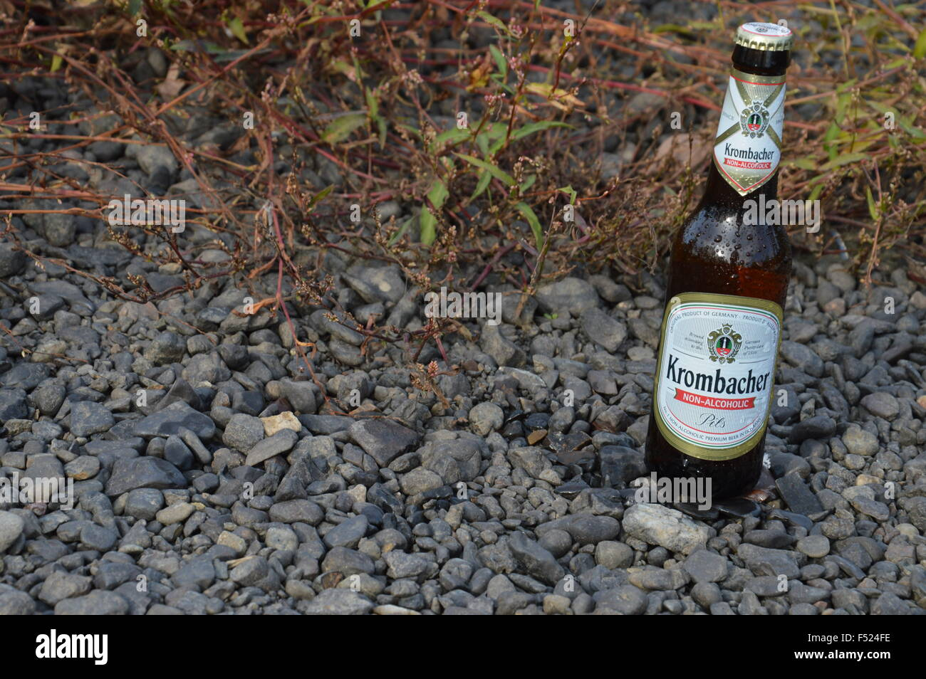 illustrative bottle non alcoholic beer in nature - Stock Image
