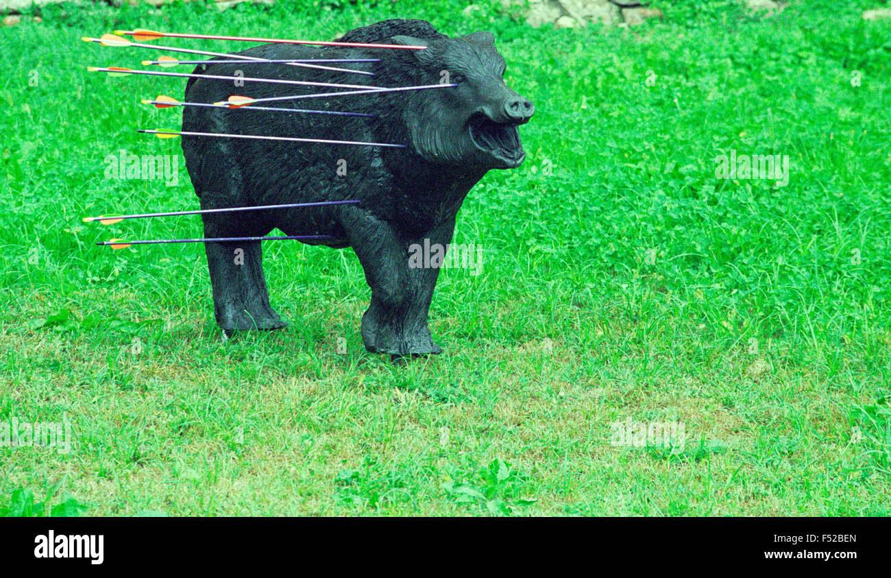 Wild Boar hit the Target with Arrows - Stock Image