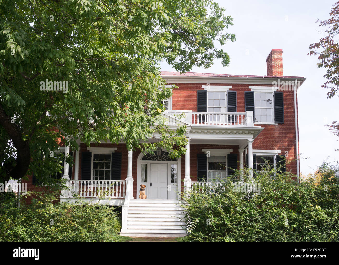 Colonial style house with dog on veranda, Charlottesville, Virginia, USA - Stock Image