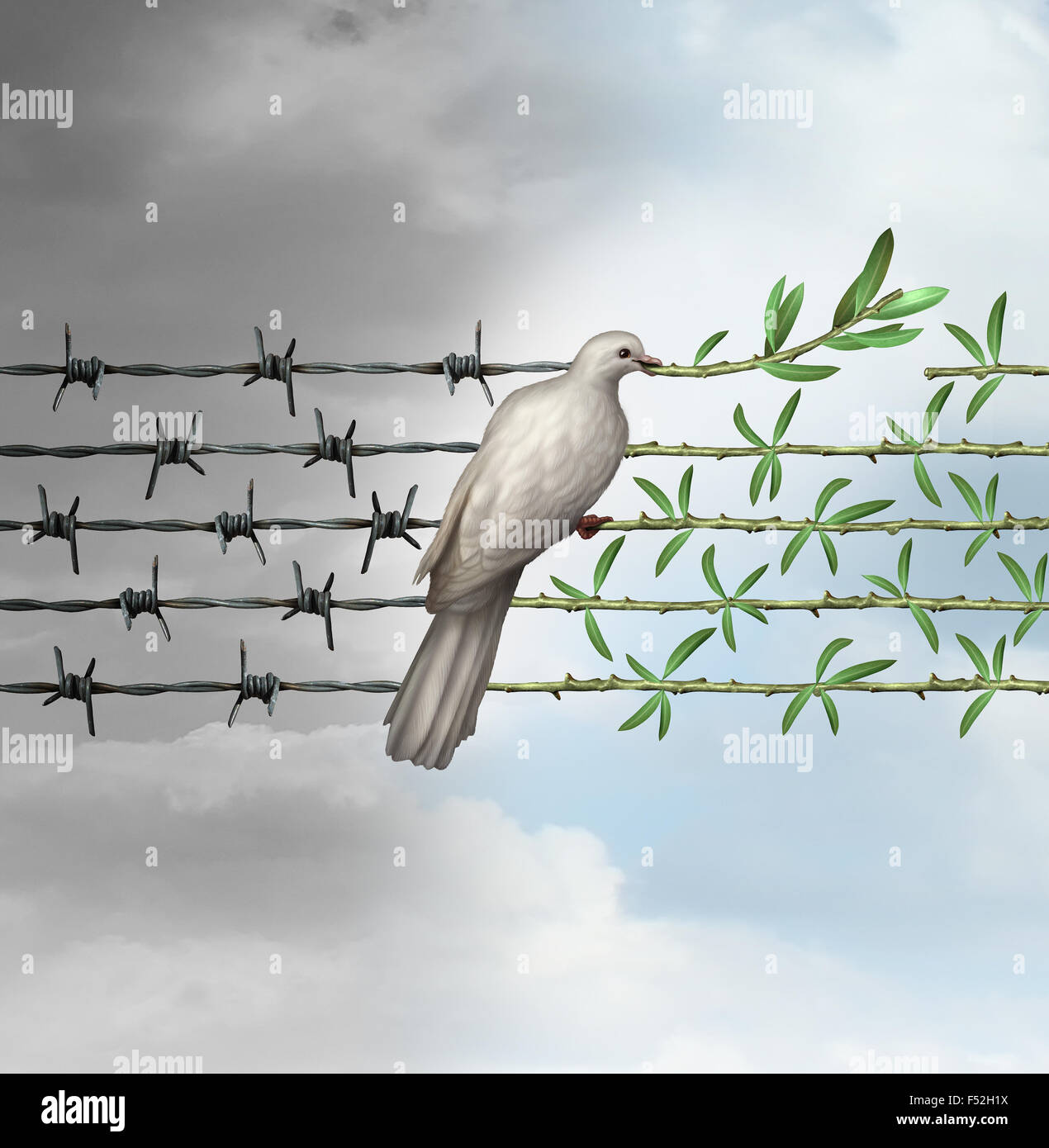Hope concept as a dove perched on barbed wire transforming into an olive branch as a symbol for good will towards - Stock Image