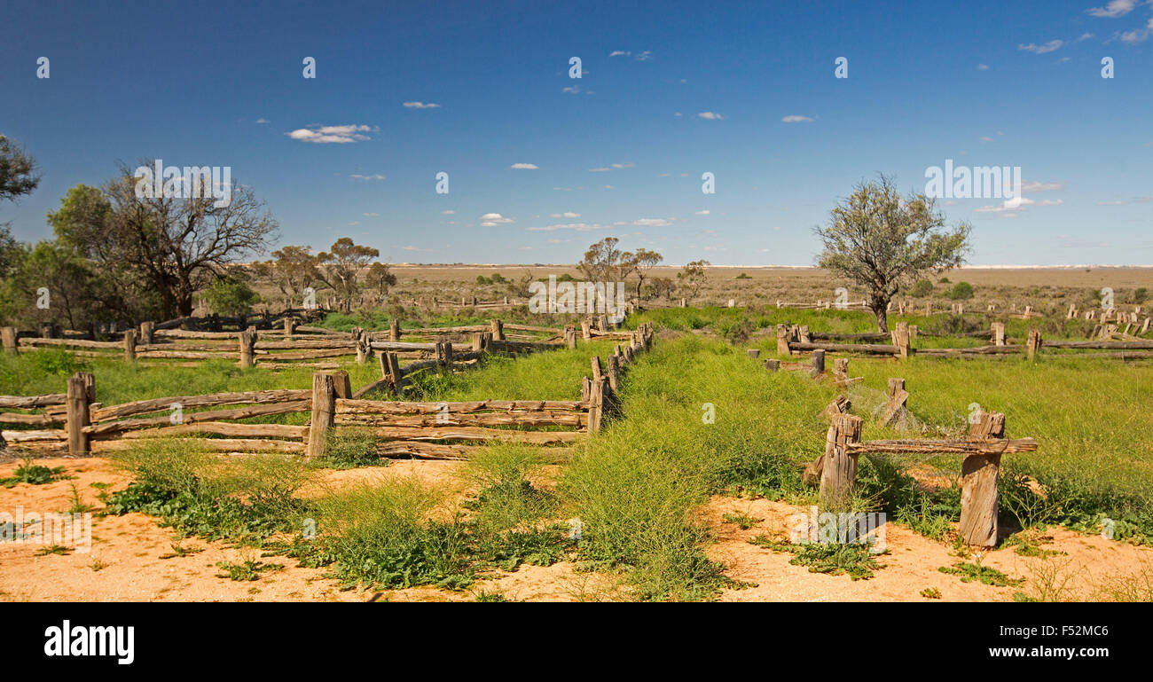 Panoramic view of old stock yards made from cypress pine in Australian outback landscape of emerald grass after Stock Photo