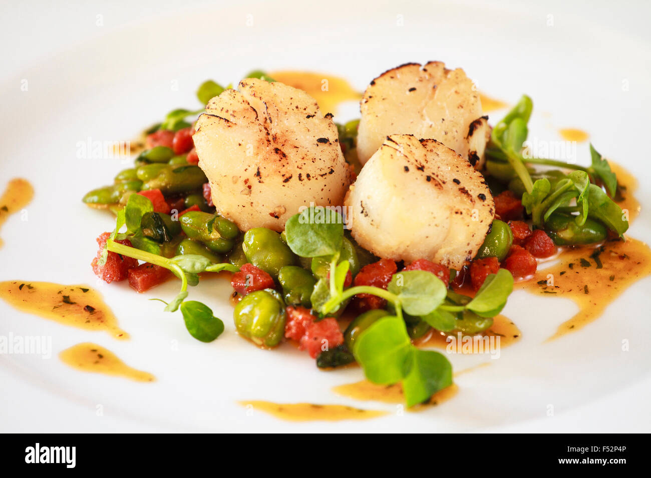 Pan fried scallops with Broad beans & chorizo - Stock Image