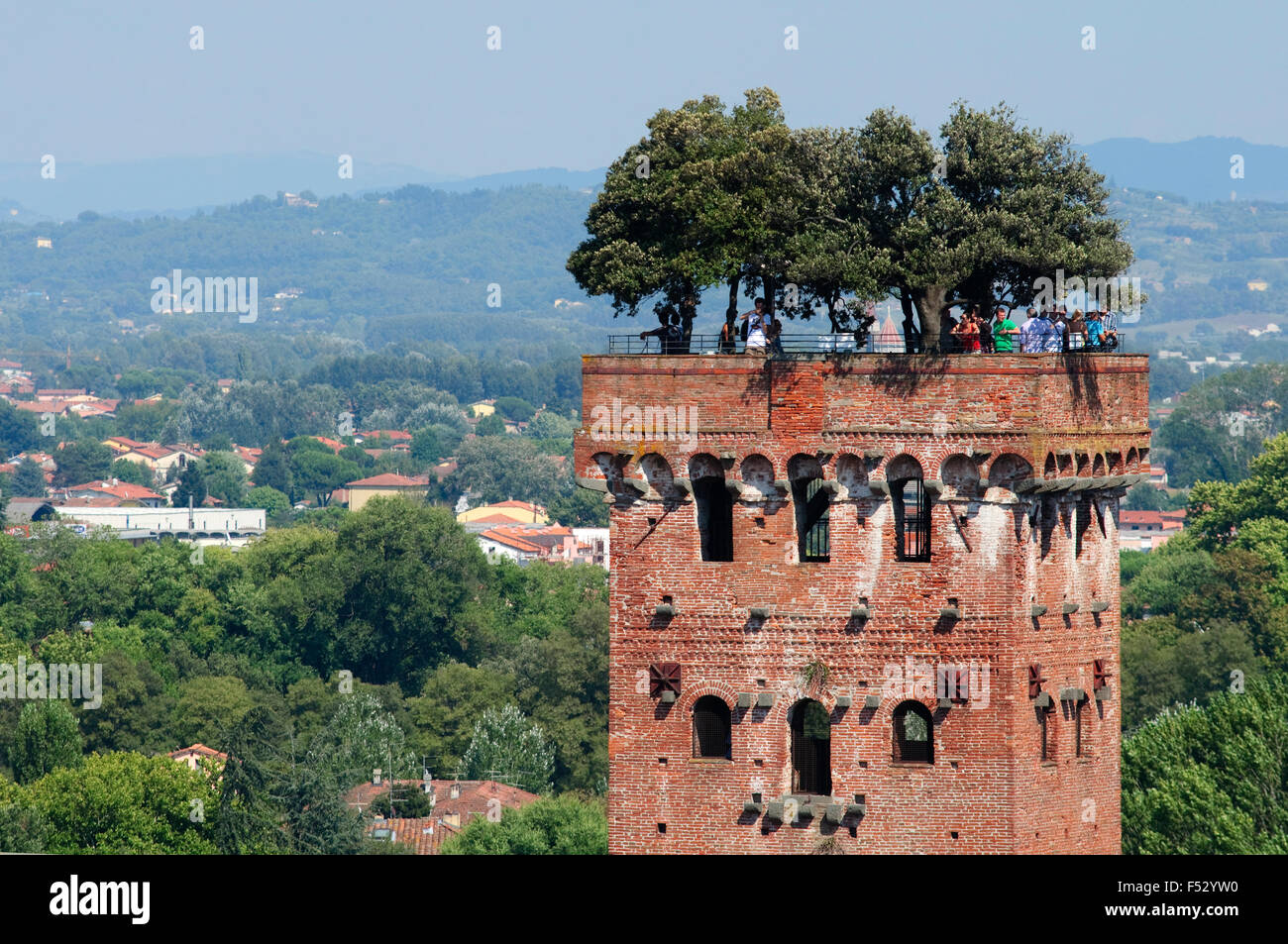 Italy, Tuscany, Lucca, Guinigi Tower - Stock Image