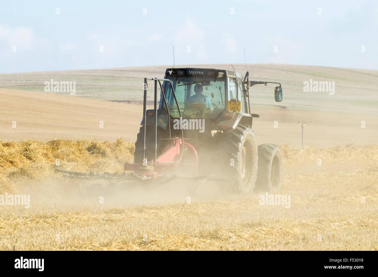 Farmer turning hay to dry before baling. England, UK. - Stock Image